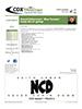 CDX-Traction-Chart-Newsletter-V3-39